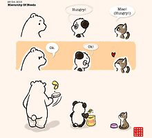 Hierarchy Of Needs by Panda And Polar Bear