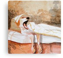 Sleep In Canvas Print