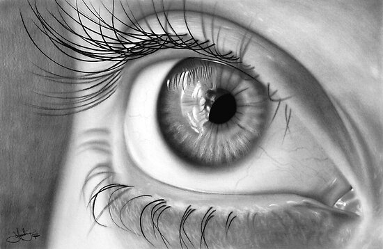 Eye Study drawing by John Harding