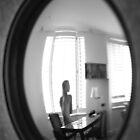 framed by david gilliver