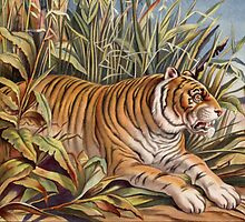 Vintage Tiger Picture by dorcas13