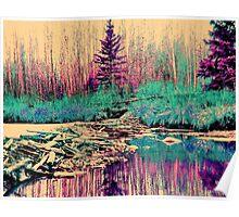 Rainbow Beaver Dam Poster