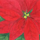 Christmas Poinsetta by Rhonda Blais