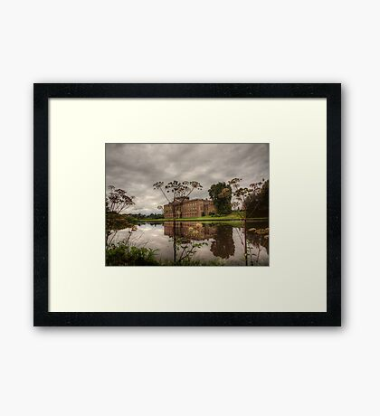 Where in the world is Darcy Framed Print