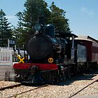Cockle Train@Goolwa, South Australia II by SusanAdey