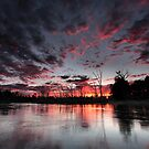 Fire In The Sky by Mark Cooper