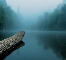 Misty Morning  by Paul Campbell  Photography