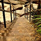 Sandy Stairs by Robyn Forbes