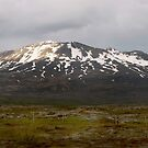 Icelandic Landscape by Louise Fahy