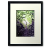 Spring walk in the country. Framed Print