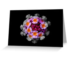 Flower paradise Greeting Card