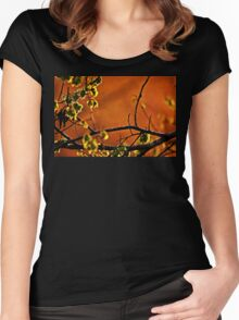 Backlit Branch Women's Fitted Scoop T-Shirt