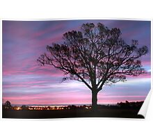 Pastel Skies At Dawn Poster