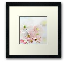 The Silent World of a Butterfly Framed Print