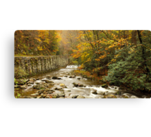 Laurel Creek II Canvas Print
