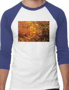 Backlit Branch II Men's Baseball ¾ T-Shirt