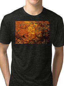Backlit Branch II Tri-blend T-Shirt
