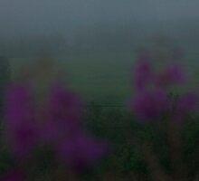 Magic floral dawn.... by Brown Sugar. by © Andrzej Goszcz,M.D. Ph.D