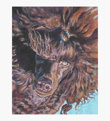Poodle Fine Art Painting Photographic Print