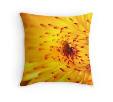 Dahlia Sun.  Throw Pillow