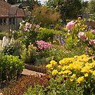 Thelma's garden by Robert Down