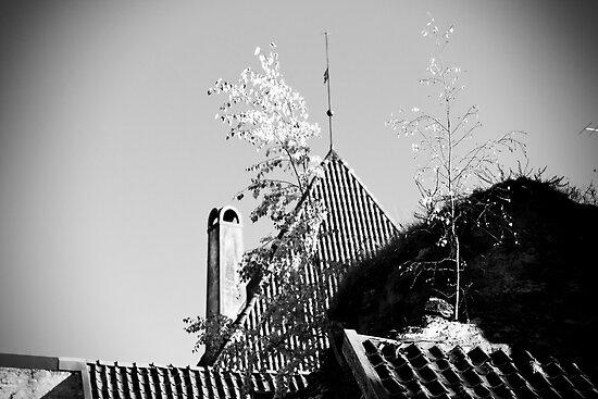 Tallinn BW. by tutulele