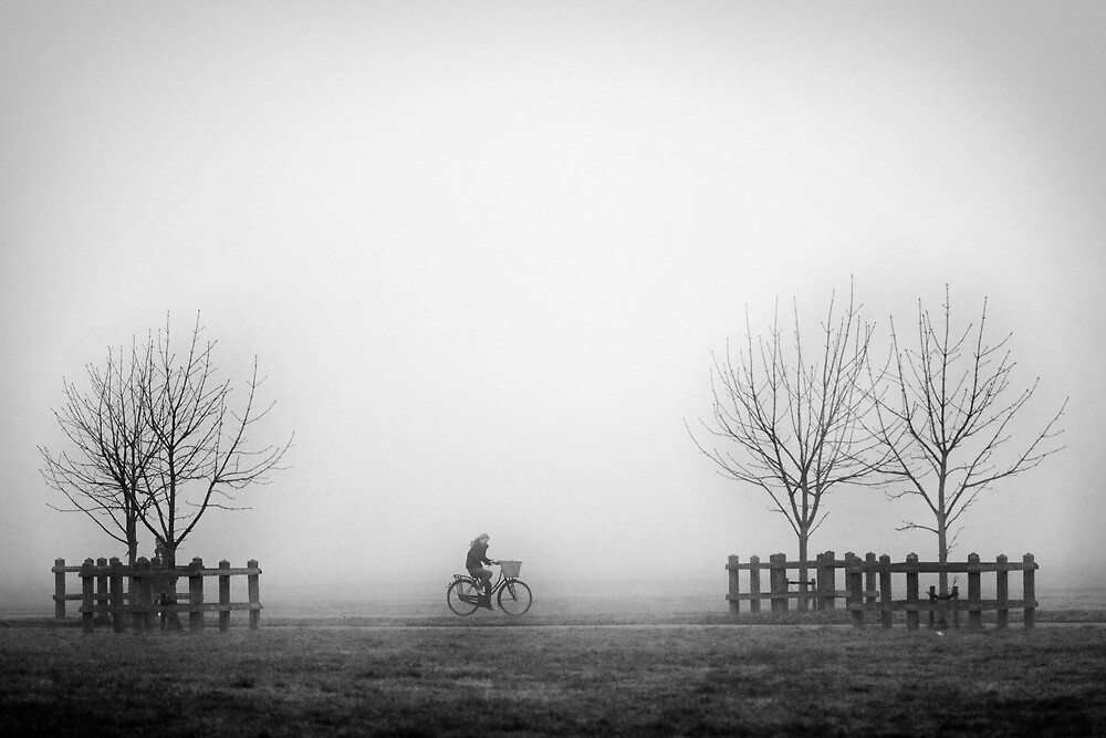 Cyclist in the Fog by Catherine Breslin