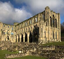 Rievaulx Abbey by Theresa Elvin