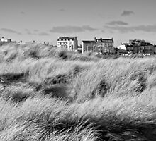 Seaton Carew front by David Hall