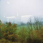 Forest from a train's window by busteradams