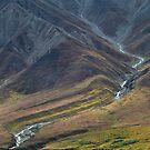 Mountain Creek by Walter Quirtmair