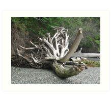 I Once Was a Tree... Art Print