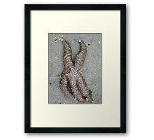 Seawater, Take Me Away Framed Print