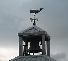 Northwest Weathervane by EvansKelly
