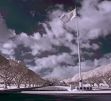 Punchbowl Memorial Infrared by jcbwalsh