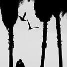 'Love Birds'....(Venice Beach, California.) by Russ Styles