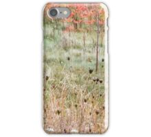 Fall Colours iPhone Case/Skin