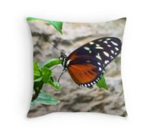 RebNBlack Butter Fly 1 Throw Pillow