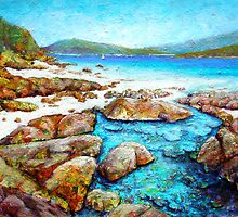 Rockpool at Chalkie's Beach by Carla Whelan
