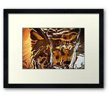 Mirror, Mirror on the wall... Framed Print
