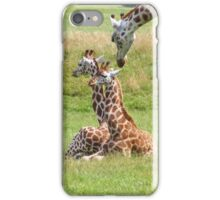 Giraffe Calves iPhone Case/Skin