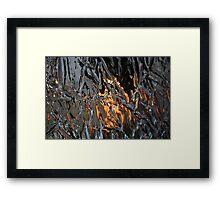 Mirrow, Mirror on the wall... #2 Framed Print