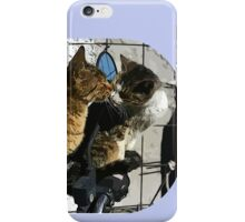 Cats in love iPhone Case/Skin