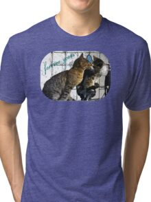 Cats in love Tri-blend T-Shirt