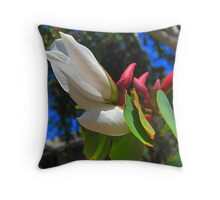 Bauhinia Flower and Buds Throw Pillow