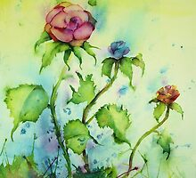 Rose's Desire by Shoshanna Bauer