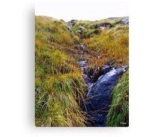 Waterfall in Ireland Canvas Print