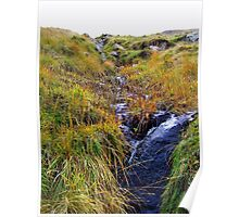 Waterfall in Ireland Poster