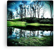 Portals and Reflections Canvas Print
