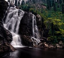 Steavenson Falls (HDR) by Keith Irving